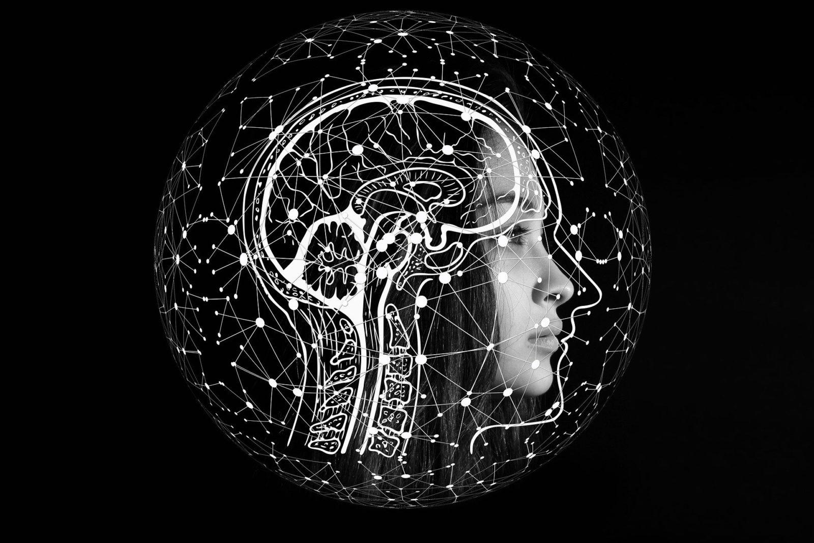 Anwendungsgebiete künstlicher Intelligenz